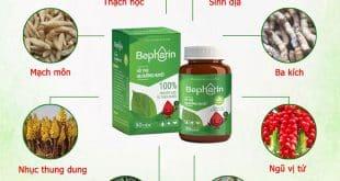 thành phần bepharin