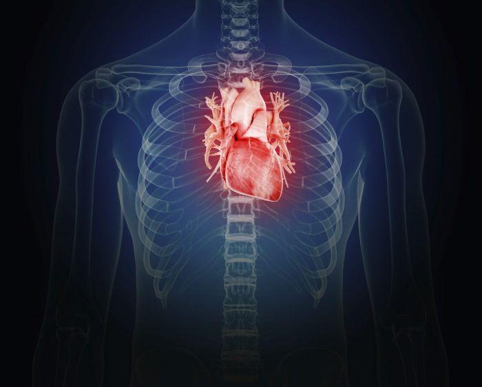 Cung lượng tim là gì?