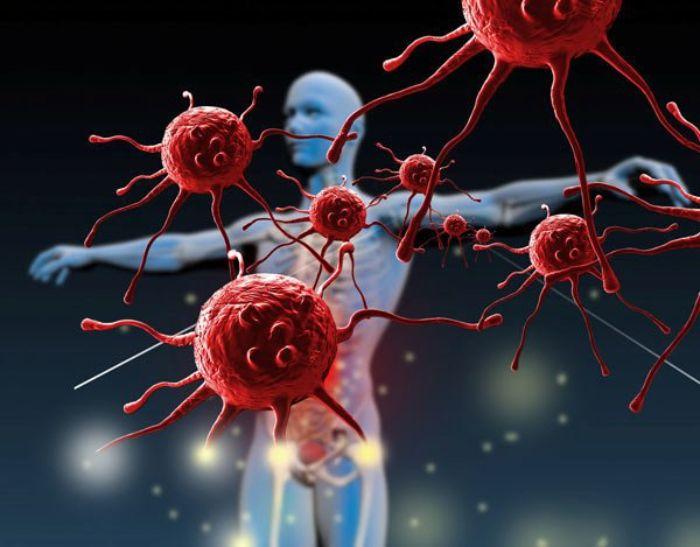 Khi xây dựng các liệu pháp điều trị ung thư thì việc sử dụng các loại thuốc kháng tăng sinh mạch máu là điều vô cũng cần thiết