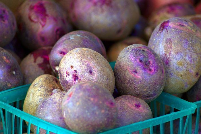 Tại sao nên hạ huyết áp bằng khoai tây tím?