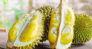 Người bị tiểu đường có nên ăn sầu riêng hay không?
