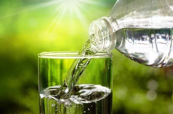 Nước lọc nấu lá sung chữa tiểu đường