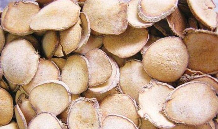 Củ của cây trạch tả là bộ phận được dùng làm thuốc