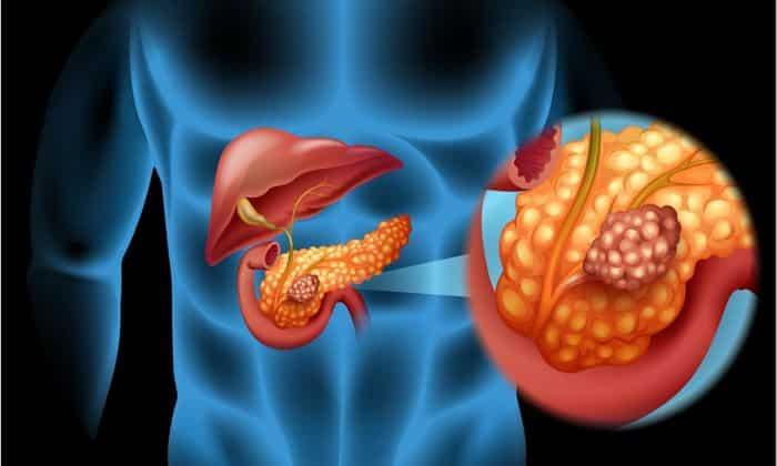 Tuyến tụy có vai trò đặc biệt quan trọng đối với đường huyết