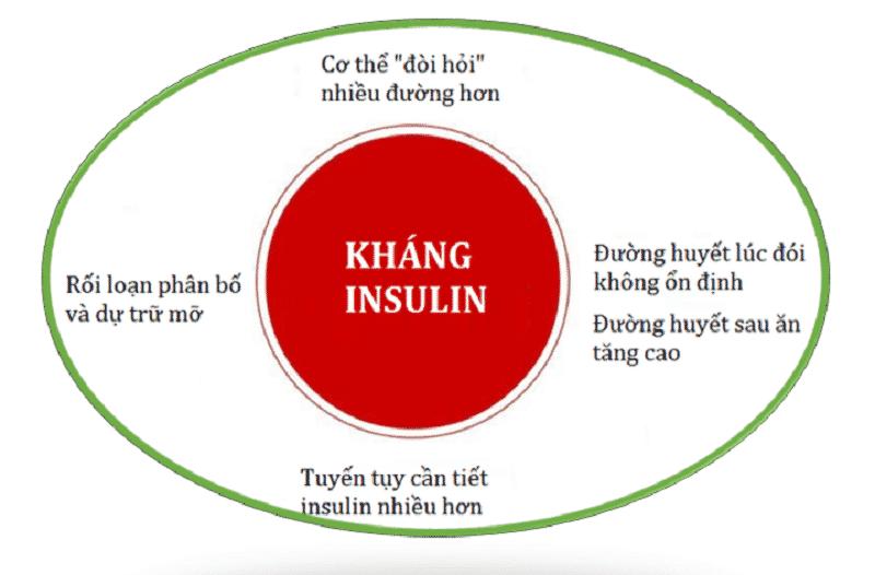ung-dung-co-che-khang-lai-insulin-trong-dieu-tri-tieu-duong