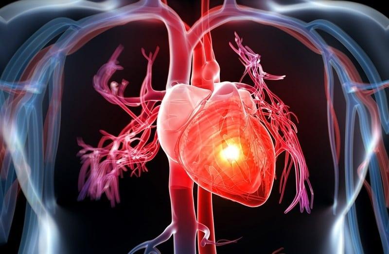Triglyceride tăng cao gây biến chứng tim mạch