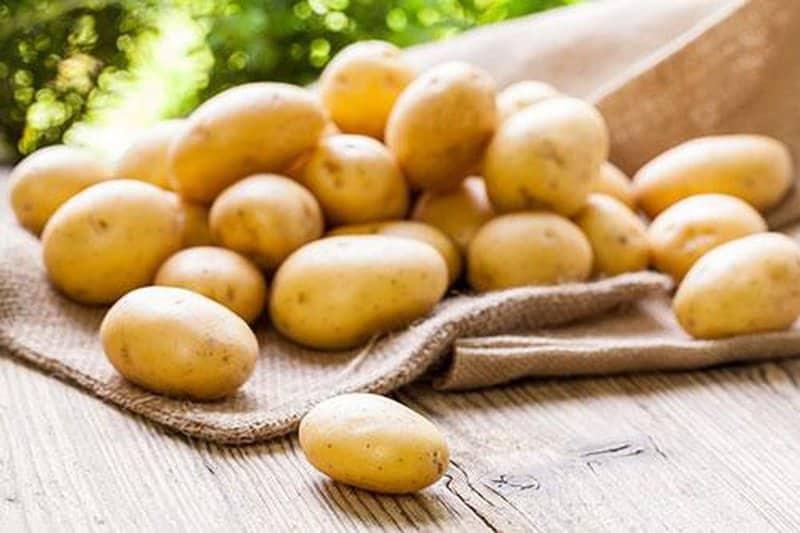Khoai tây cũng là thực phẩm bổ máu nên dùng