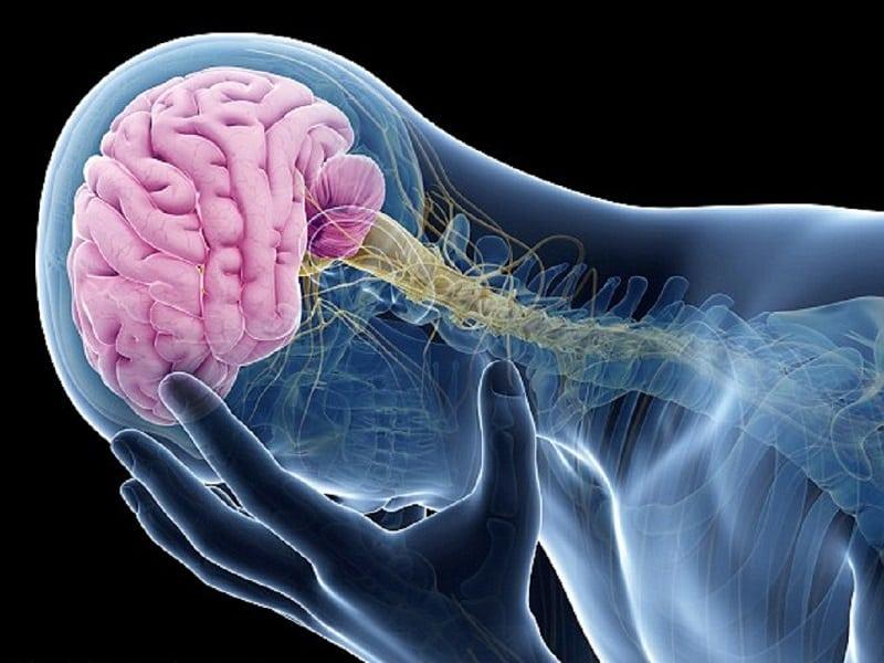 Những ai dễ bị phình mạch máu não?