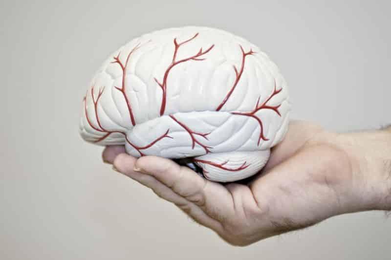 Thiểu năng tuần hoàn não ở người trẻ gây ra những hậu quả nghiêm trọng