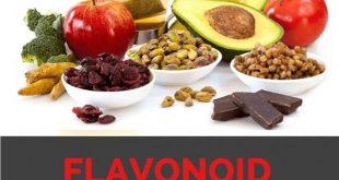 Flavonoid là gì