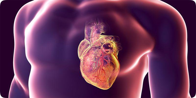 Hở van động mạch chủ
